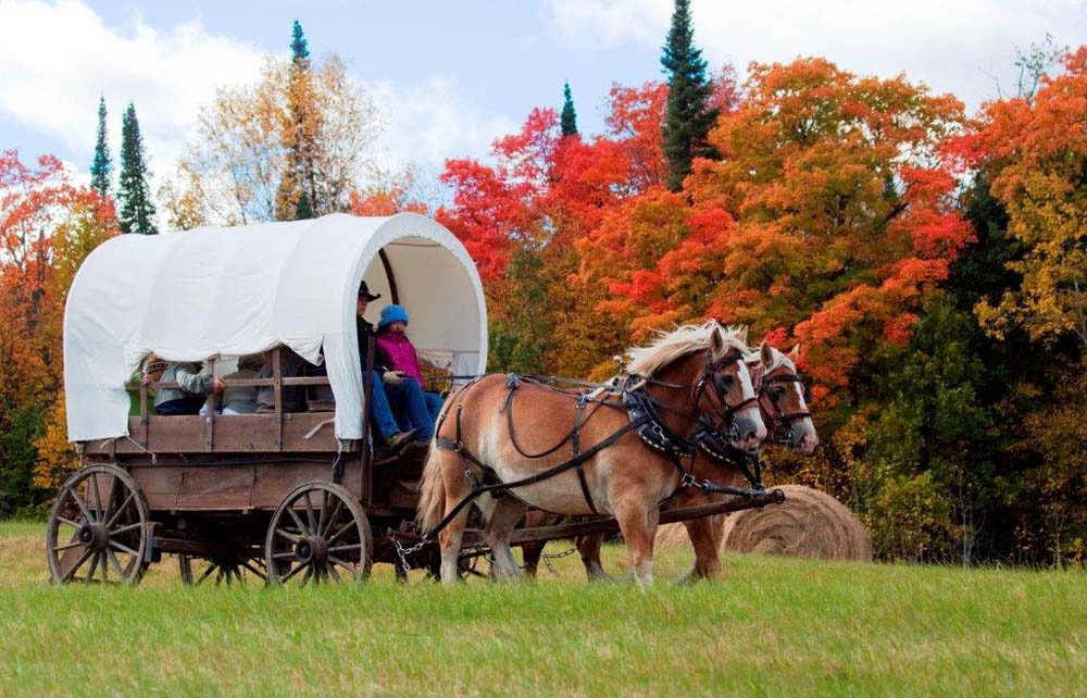Traveling to enjoy the colors of the fall
